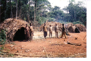 camp-baka-2.jpg